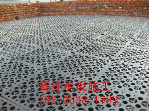 蓄排水板wu顶绿化